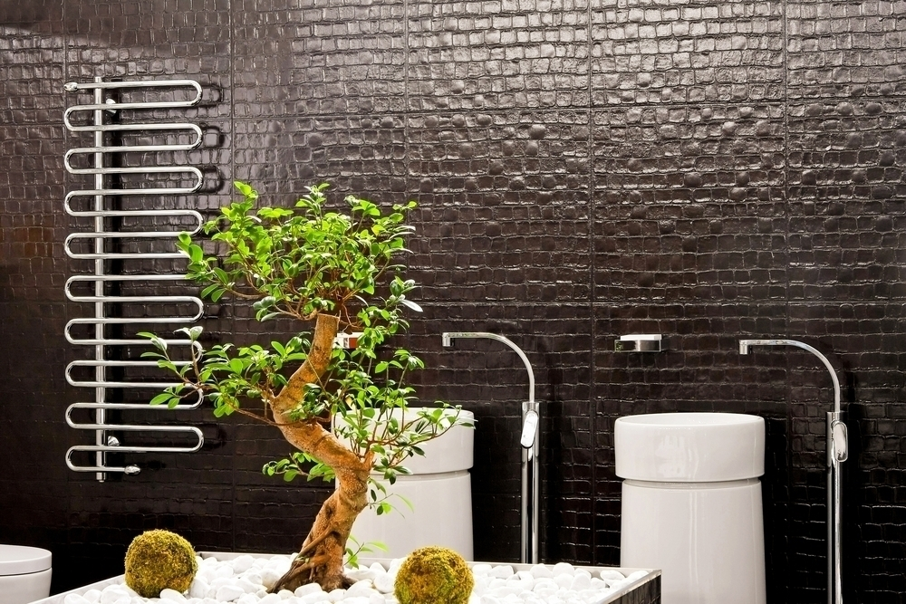 A bonsai tree used as decoration in a bathroom.