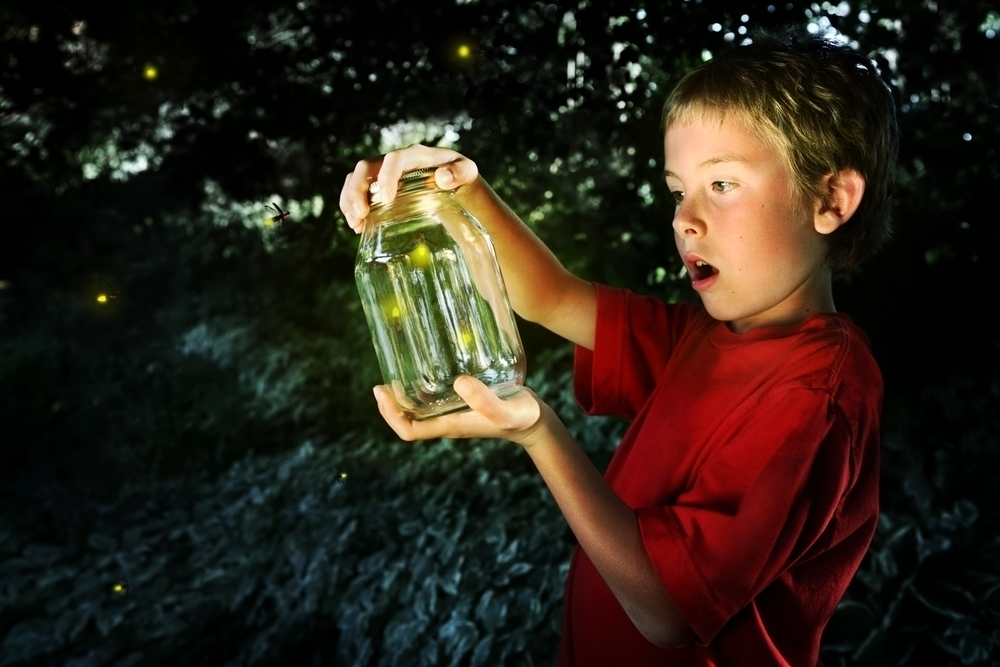 Young boy catching fireflies.