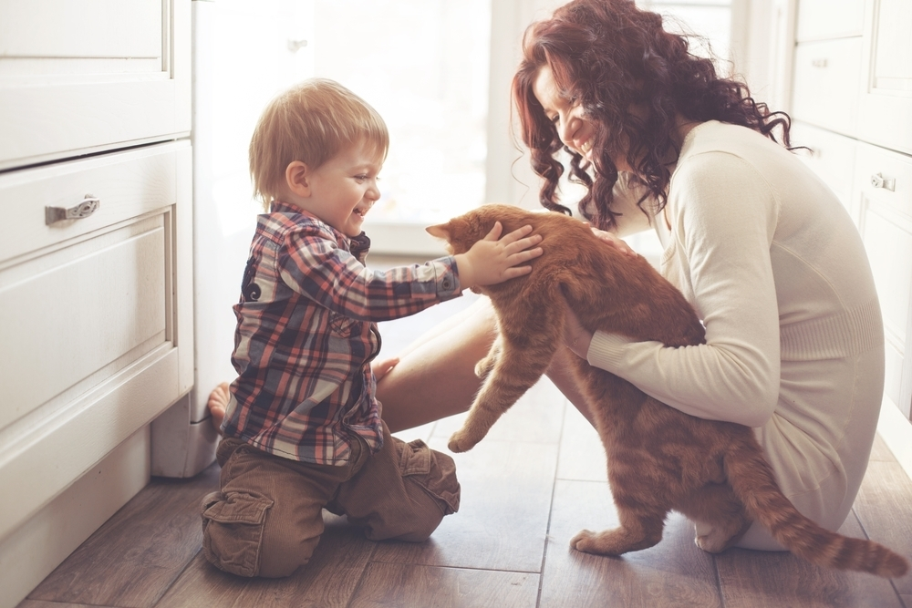 Mother and sun playing with their pet cat.