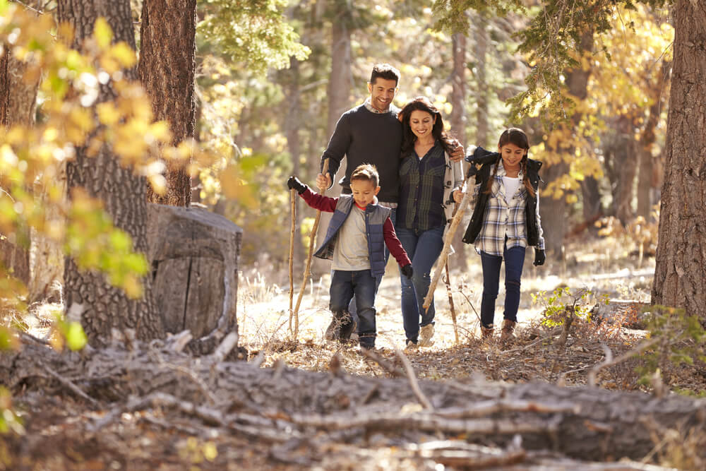 Happy young family walking in the woods