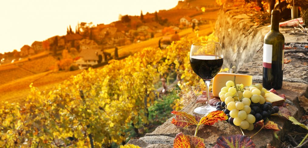 Glass of wine on a terrace during fall.