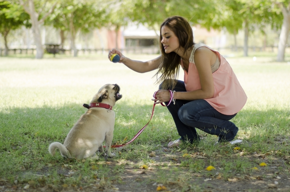 Woman playing with pug