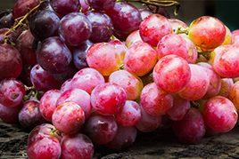 Resveratrol's Benefits