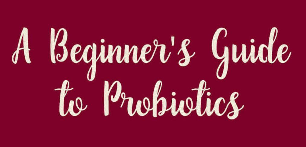 Header of Beginner's Guide to Probiotics