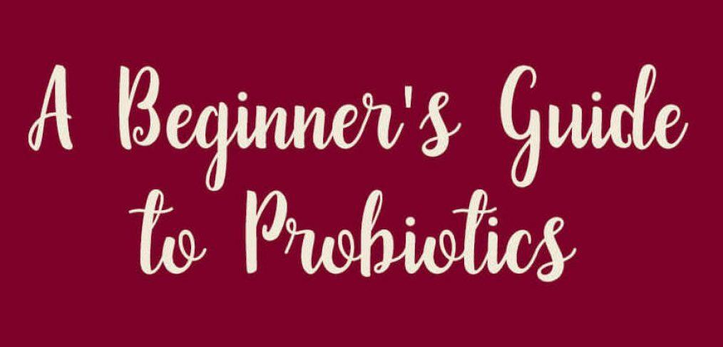 Header of Beginner's Guide to Probiotics