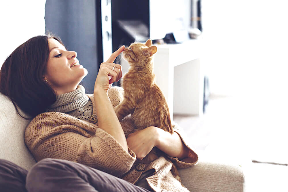 Woman playing with her cat at home