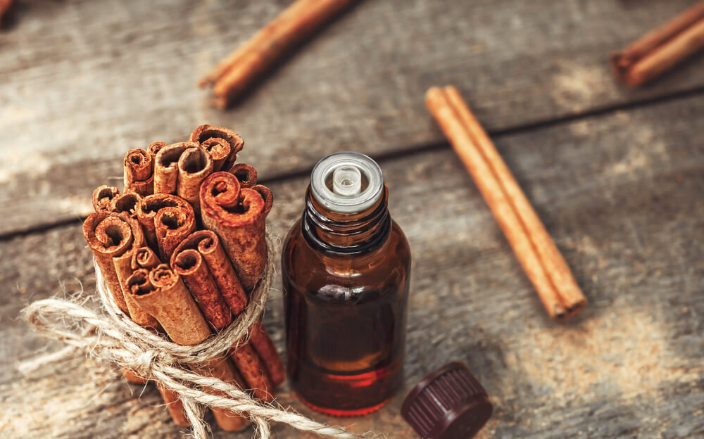 A bundle of cinnamon sticks, with a small vial of cinnamon oil